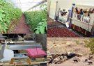 ۱۸۰۰ طرح اشتغالزایی بنیاد برکت در کرمانشاه اجرا شد