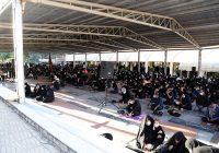 کرمانشاهیان در آتش هجران، زیارت اربعین زمزمه کردند